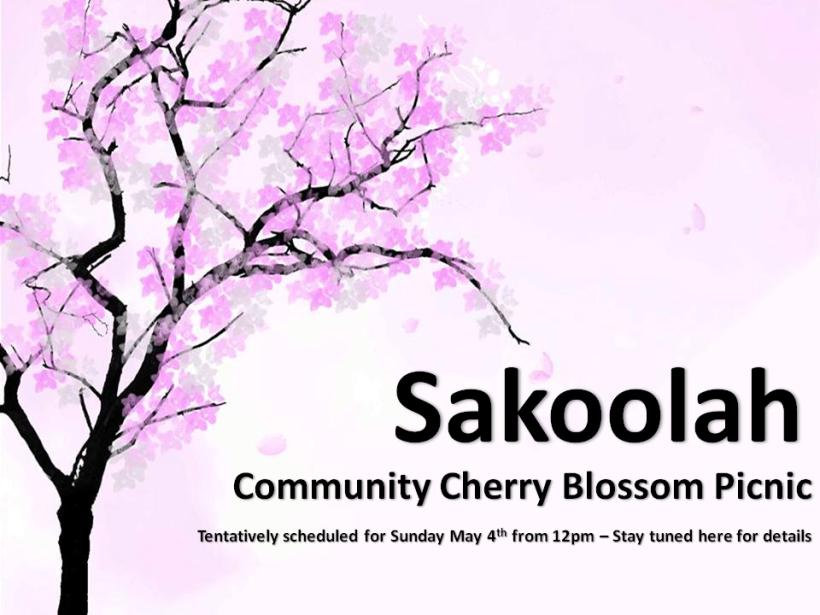 Sakoolah facebook banner